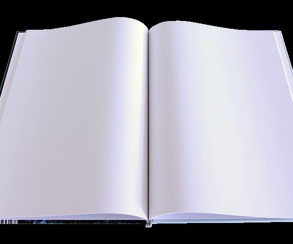 Het boek: het geldproject!